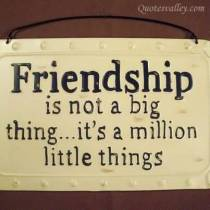 friendship-is-not-a-big-thing quotesvalley