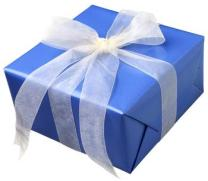 wrapped_present_box_answer_1_xlarge